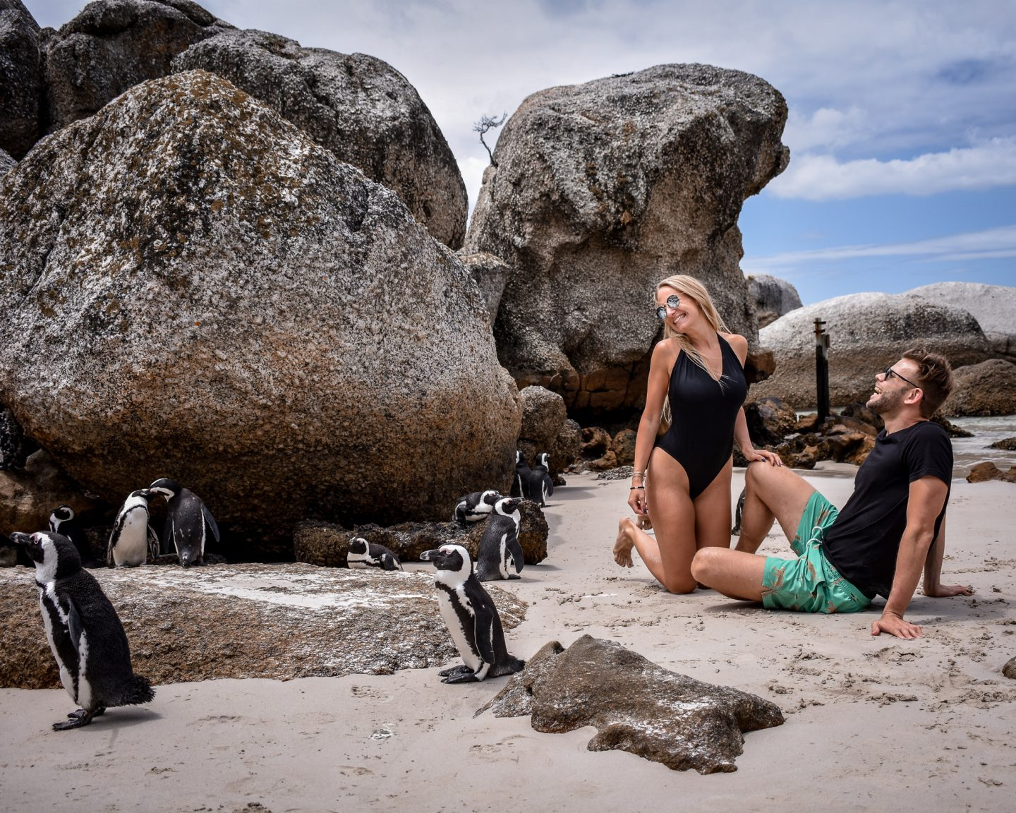 couple sitting laughing at the beach next to penguins