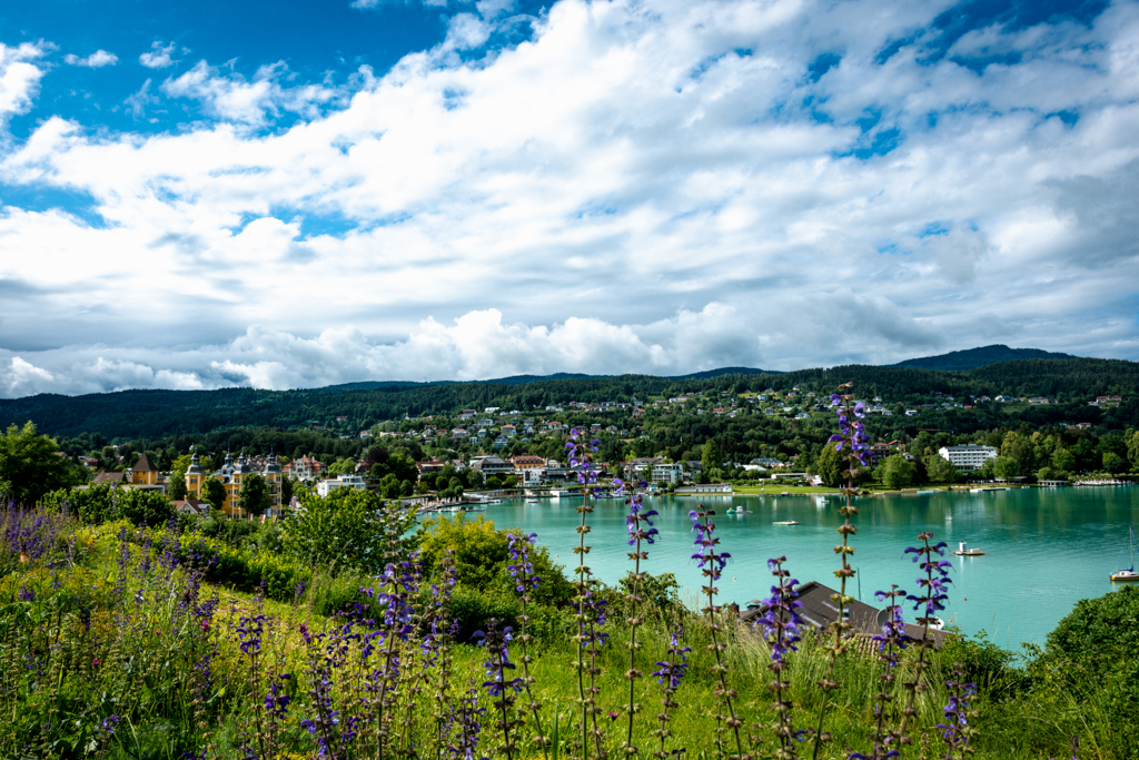 Visit Wörhersee, lake with purple flowers in the front and cloudy sky above