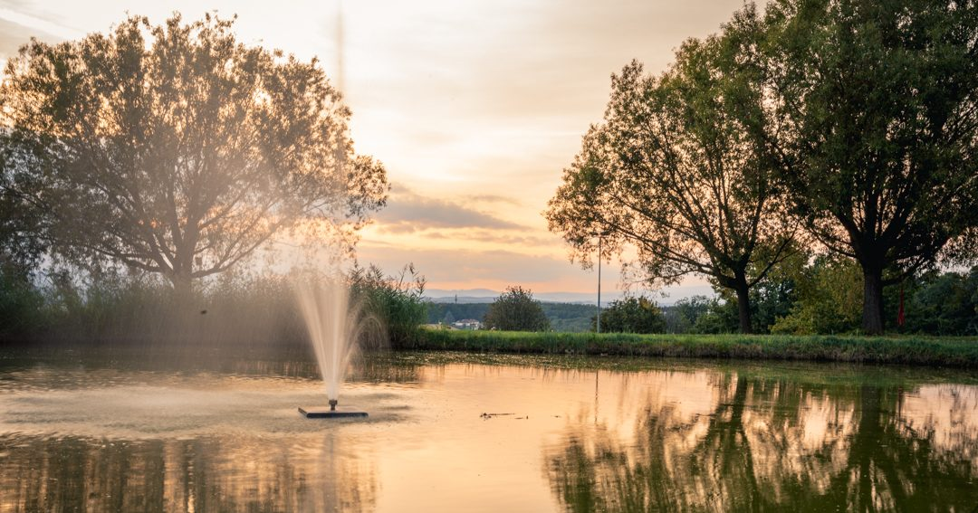 pond with fountain at sunset